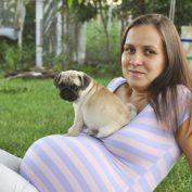 Может ли собака чувствовать беременность?